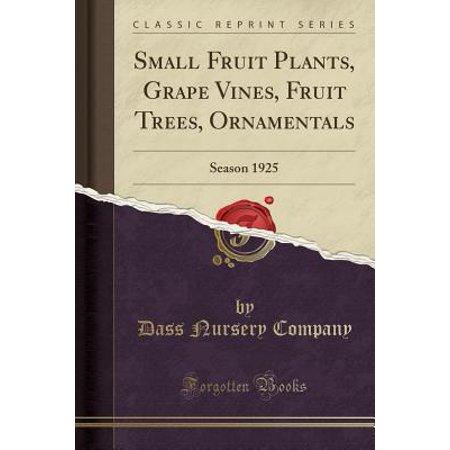 - Small Fruit Plants, Grape Vines, Fruit Trees, Ornamentals : Season 1925 (Classic Reprint)