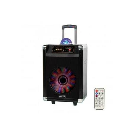 Dj Amp Speakers - 12