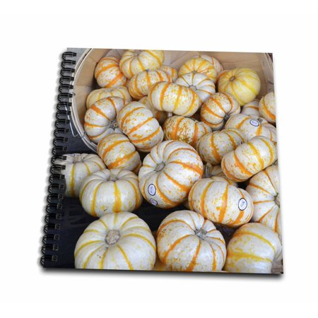 3dRose Autumn Mini Pumpkins- Halloween- Thanksgiving - Mini Notepad, 4 by 4-inch