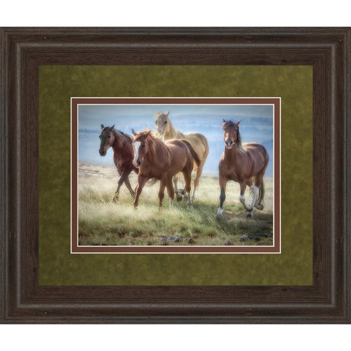 Classy Art Wholesalers Morning Stroll by Wendy Caro Framed Photographic Print by Classy Art Wholesalers
