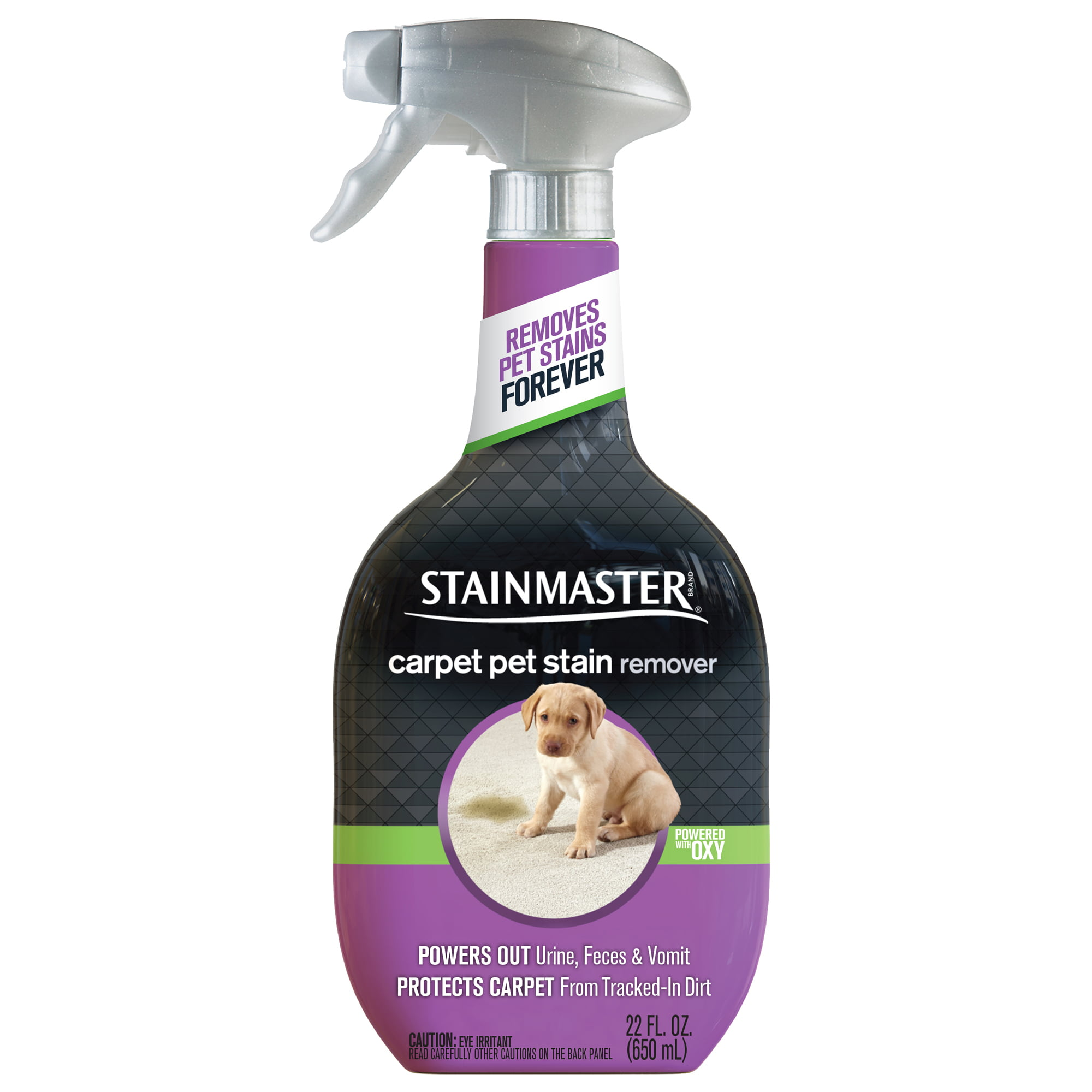 Pet Stain Remover For Carpet Tcworks Org