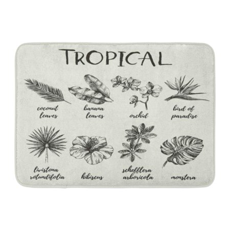 Heliconia Tropical Flower - GODPOK Hand Flower Vintage Retro Sketch Tropical Plants Illustrations Heliconia Hawaii Rug Doormat Bath Mat 23.6x15.7 inch