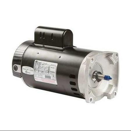 Century b2844 pool pump motor 3 hp 3450 rpm 208 230vac for Amazon pool pump motors