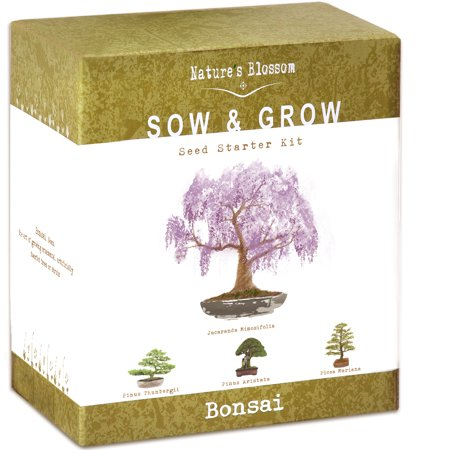 Nature's Blossom Bonsai Tree Grow Kit - 4 Bonsai Trees to Grow From Seed Everything you need to grow 4 bonsai trees from seed. Natures Blossom Bonsai grow kit contains everything you need to start your own little zen garden today and to easily grow four types of bonsai trees from seed.