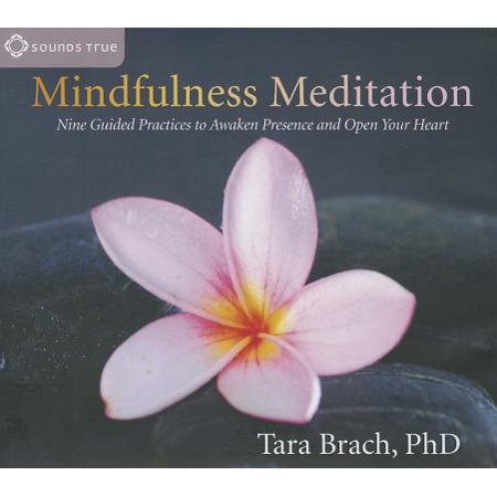 Mindfulness Meditation : Nine Guided Practices to Awaken Presence and Open Your