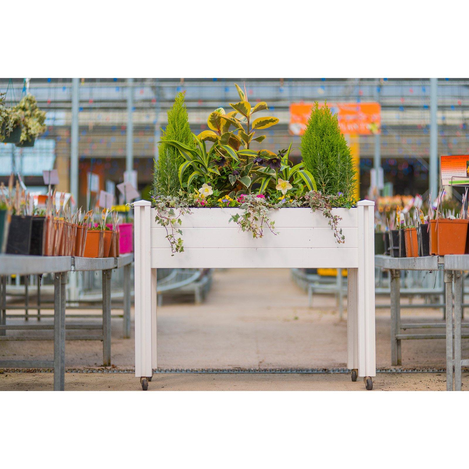 Vita Sunseeker Raised Garden