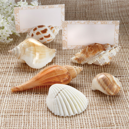 Shells By The Sea Authenitic Shell Holder