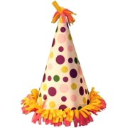 Birthday Party Costume Hat One Size