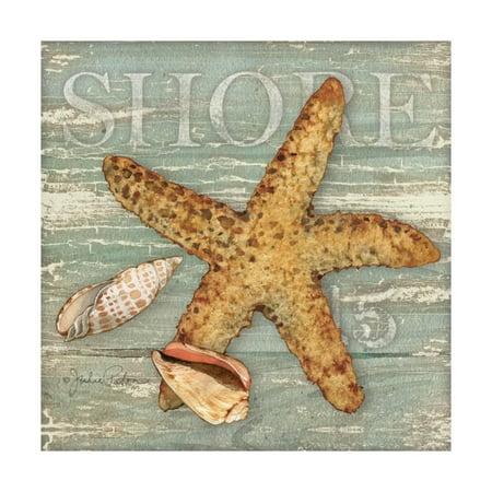 Beach Shells Starfish Print Wall Art By Julie Paton - Starfish Wall Art