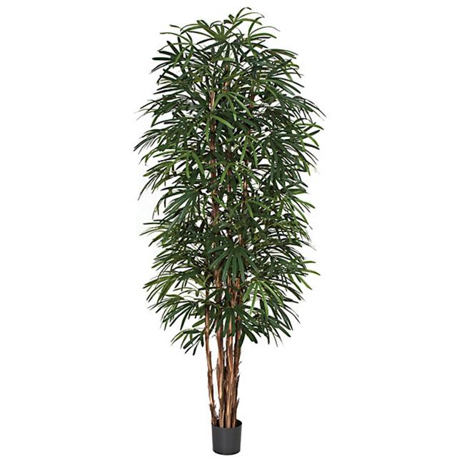 Autograph Foliages W-60269 9 ft.  Lady Palm Tree, Green