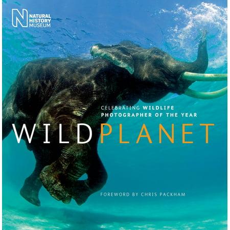 Wild Planet : Celebrating Wildlife Photographer of the