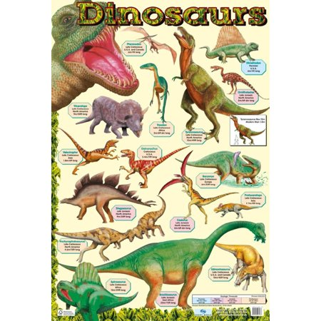 Dinosaurs Poster - 16x24 - Dinosaur Posters