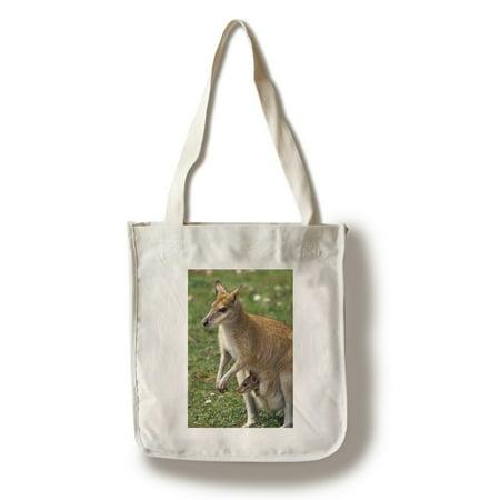 Kangaroo & Baby - Lantern Press Photography (100% Cotton Tote Bag - - Kangaroo Baby