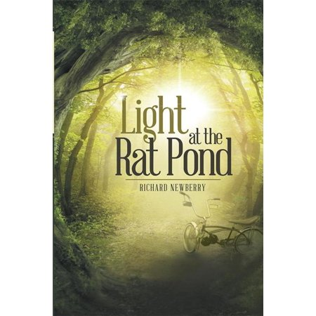 Light at the Rat Pond - eBook