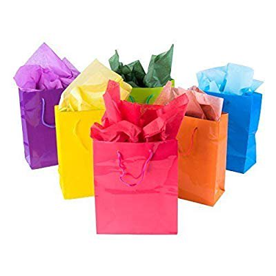 Colored Paper Bags (12 Assorted (13' h x 10' w x 4 1/2' d) Bright Neon Colored Party Present Paper Gift Bags Birthday Wedding All)
