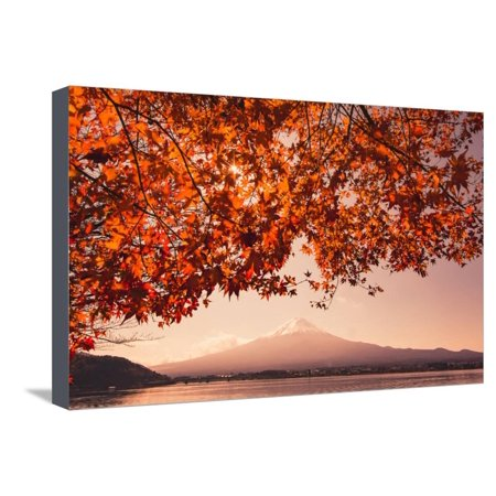 Sunset Maple (Sunset at Mountain Fuji and Red Maple Tree in Japan Autumn Season Stretched Canvas Print Wall Art By ommaphat chotirat)