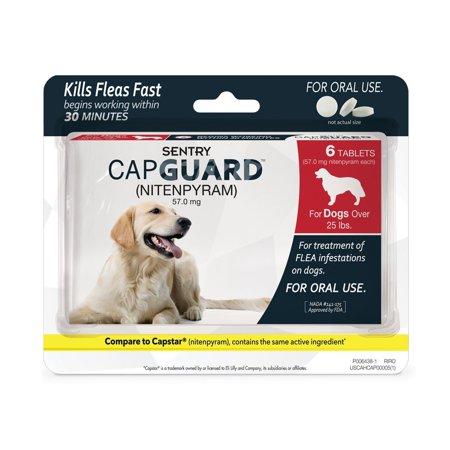SENTRY Capguard (nitenpyram) Oral Flea Control (Best Oral Medication For Fleas)
