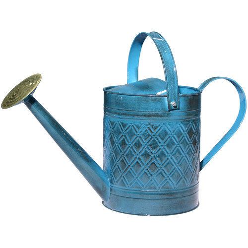 Robert Allen Home and Garden Wexley 2-Gallon Watering Can by ROBERT ALLEN LLC
