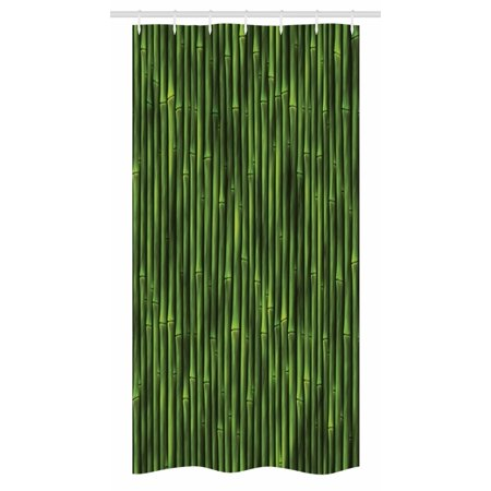 Bamboo Stall Shower Curtain, Bamboo Stems Pattern Tropical Nature Inspired Background Print Asian Wildlife Zen Theme, Fabric Bathroom Set with Hooks, 36W X 72L Inches Long, Green, by Ambesonne