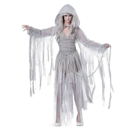 Haunting Beauty Adult Costume - Sleeping Beauty Costume For Adults
