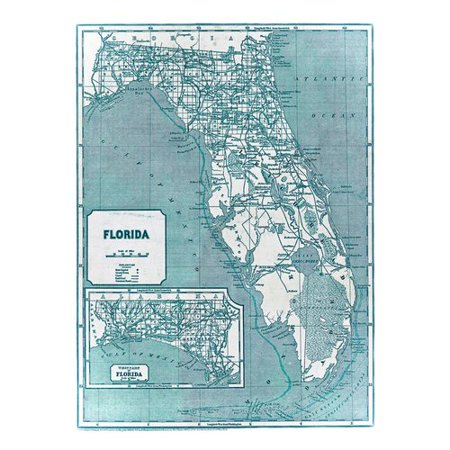 Alcott Hill Pender \'1842 Florida Map\' Graphic Art Print on ...