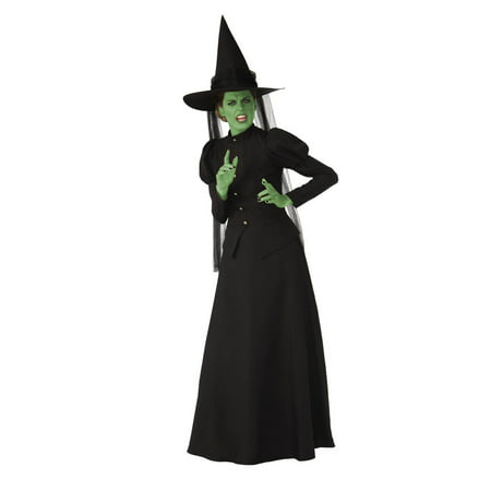 Wicked Witch Elite Adult Costume](4t Witch Costume)