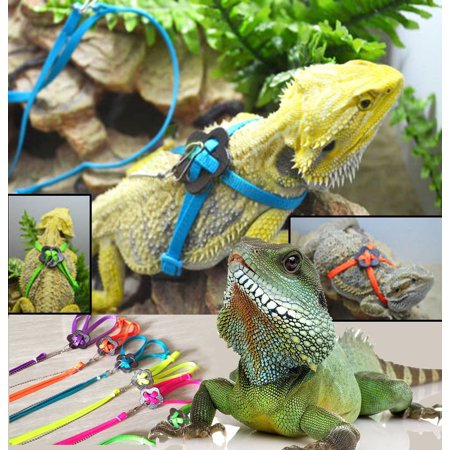 Adjustable Reptile Lizard Harness Leash Adjustable Multicolor Light Soft Fashion(Green) ()