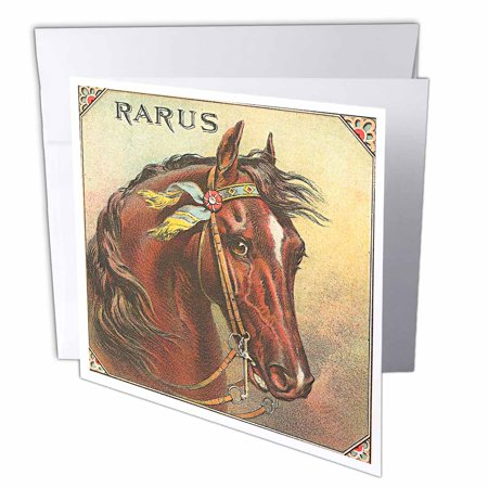 3dRose Beautiful Vintage Horse Label, Greeting Cards, 6 x 6 inches, set of 6