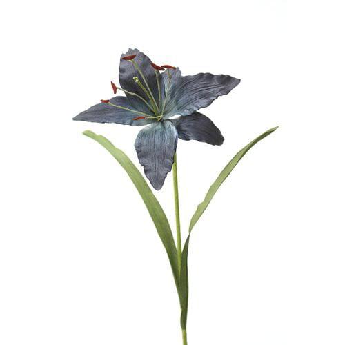 Distinctive Designs DIY Flower Madonna Lily (Set of 12)