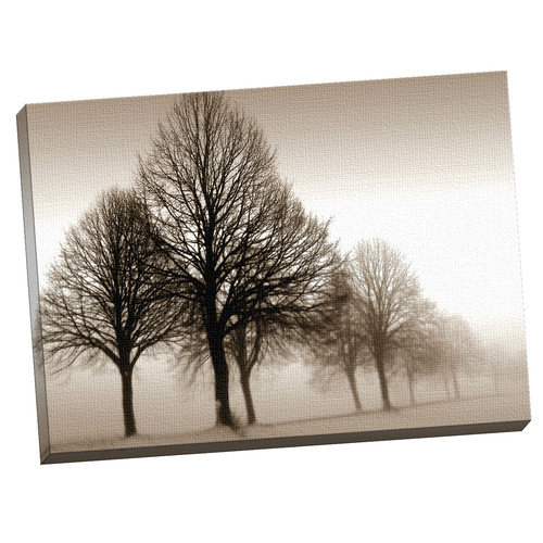 "Portfolio Canvas Decor ""Melancholy"" Framed and Stretched Canvas Wall Art, 35x40"