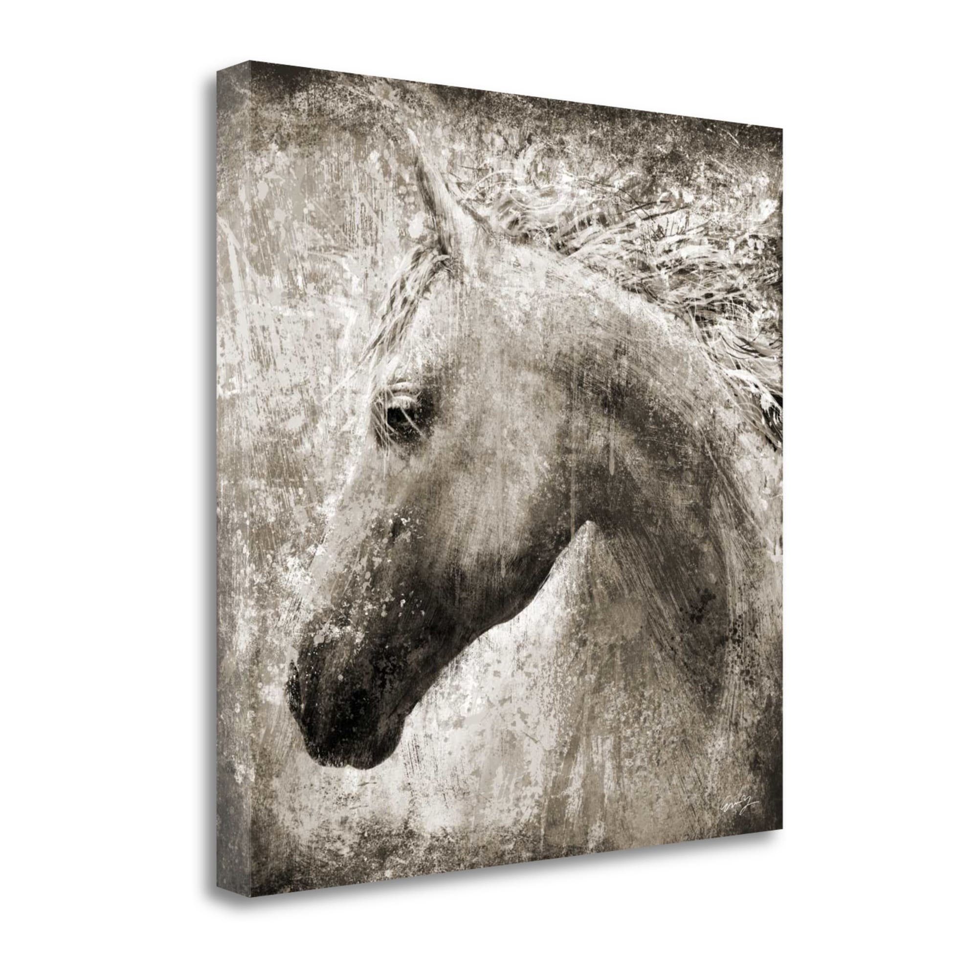 Tangletown Fine Art Majestic Horse Graphic Art Print On Canvas Walmart Com Walmart Com