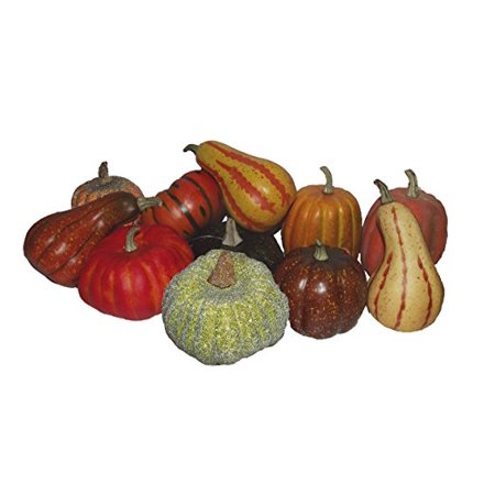 Nine West Mini - WEST COAST MINI NATURAL PUMPKIN DECORATION ASSORTED CHOICES MAY VARY