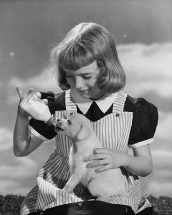 Girl feeding milk to a puppy from a baby bottle Poster Print by Posterazzi