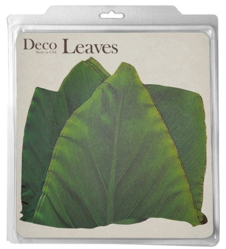 EuroQuest Imports Banana Deco Parchment Leaves, Package of 7