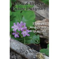 Biblical Hebrew Picture Dictionary (Paperback)