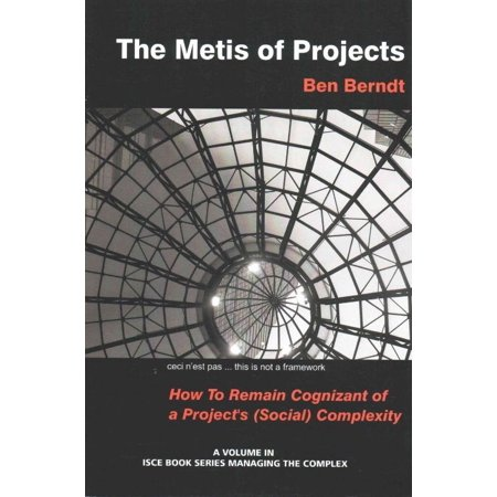 The Metis Of Projects  How To Remain Cognizant Of A Project S Social Complexity