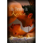 His Destiny is Karma (The Gossip of Mysterious Lane #2) - eBook