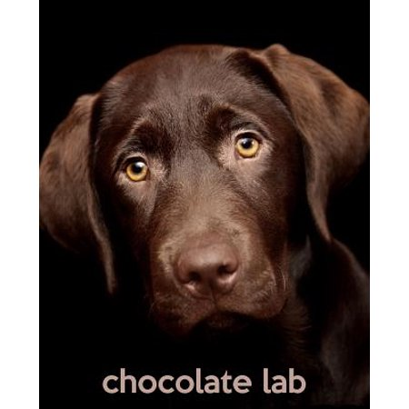 Chocolate Lab : A Gift Journal for People Who Love Dogs: Chocolate Labrador Retriever Puppy Edition