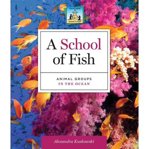 A School of Fish: Animal Groups in the Ocean