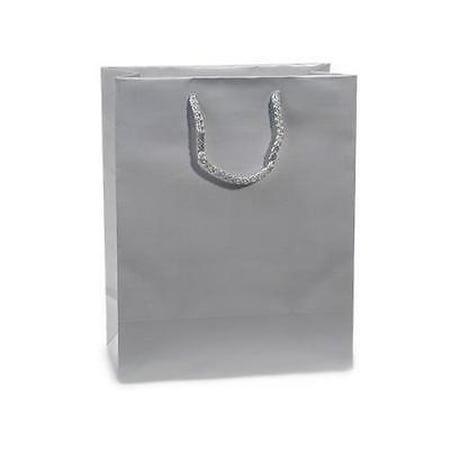 1 Unit Silver Gloss Cub Gift Bags Bulk 8x4x10