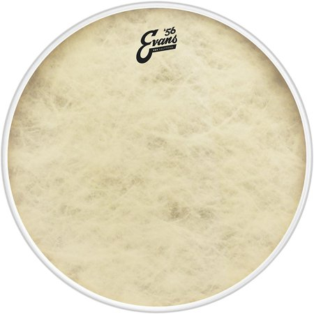 Evans EQ4 Calftone Bass Drum Head - 18