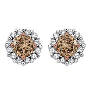 SHAH DIAMONDS INC 10k White Gold 1/2ct TDW Brown and White Diamond Halo Earrings