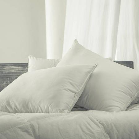 Cozy Classics Silky Soft Down Alternative Pillows,