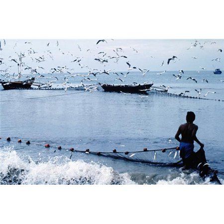 Fisherman Collecting Nets On Beach Poster Print, 34 x 22 - Large - image 1 of 1