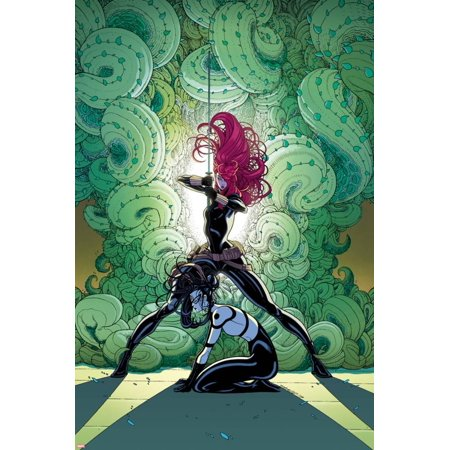 Black Widow Secret (Secret Avengers No. 12 Cover, Featuring: Black Widow, Lady Bullseye Poster Wall Art By Tradd)