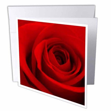 3drose Red Rose Flower Love Relationship Valentine Romance Romantic