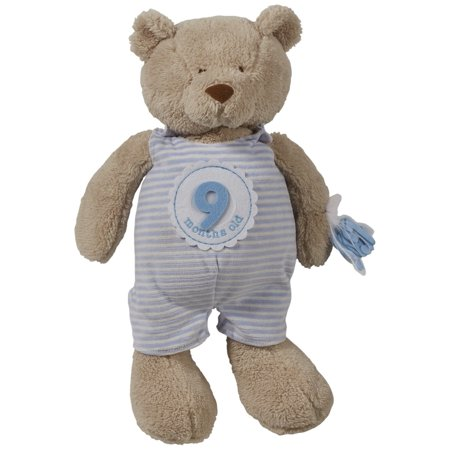 5ae177d15af6e Mud Pie Monthly Milestone Counts Up To A Year Plush Bear Nursery Decor -  Blue