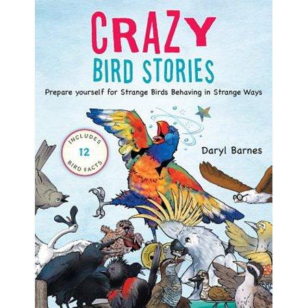 Crazy Bird (Crazy Bird Stories : Prepare Yourself for Strange Birds Behaving in Strange)