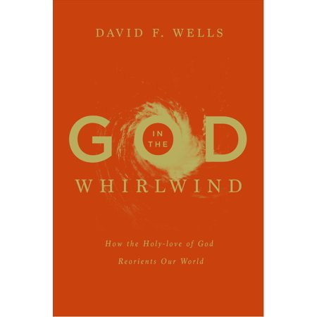 God in the Whirlwind : How the Holy-Love of God Reorients Our (Reorient Global Economy In The Asian Age)
