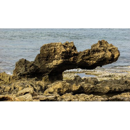 Crocodile Rock - Canvas Print Cyprus Rock Protaras Crocodile Rocky Coast Stretched Canvas 10 x 14